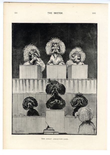 1893 LOUIS WAIN Poodles DOGS Courtroom PRINT Rene Bull